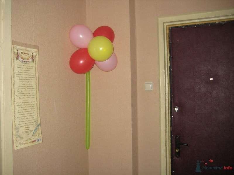 коридор - фото 35848 Надюша