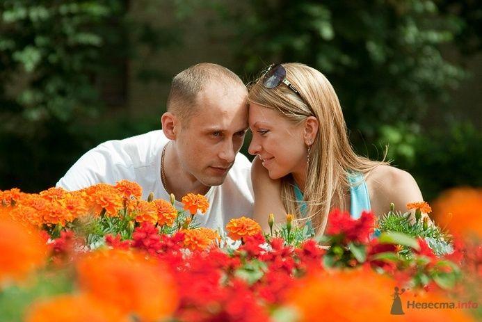 Фото 40386 в коллекции Мои фотографии - Фотограф Корочкин Олег