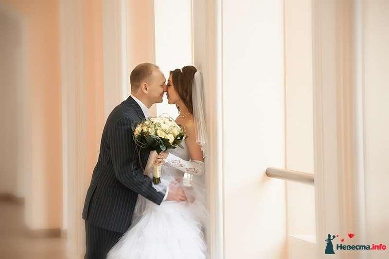 Фото 416337 в коллекции Свадебное. - Фотограф Андрей Завьялов