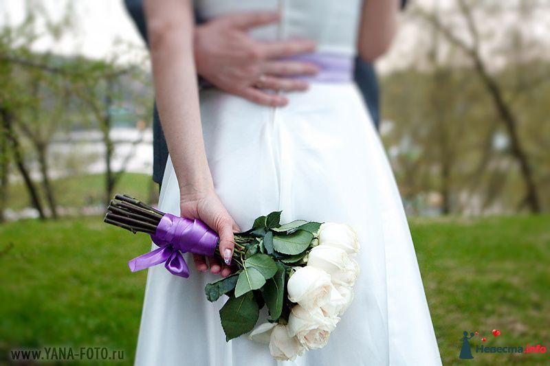 Букет невесты из белых роз, завязанный сиреневой атласной лентой  - фото 105297 Фотограф Яна Роджерс