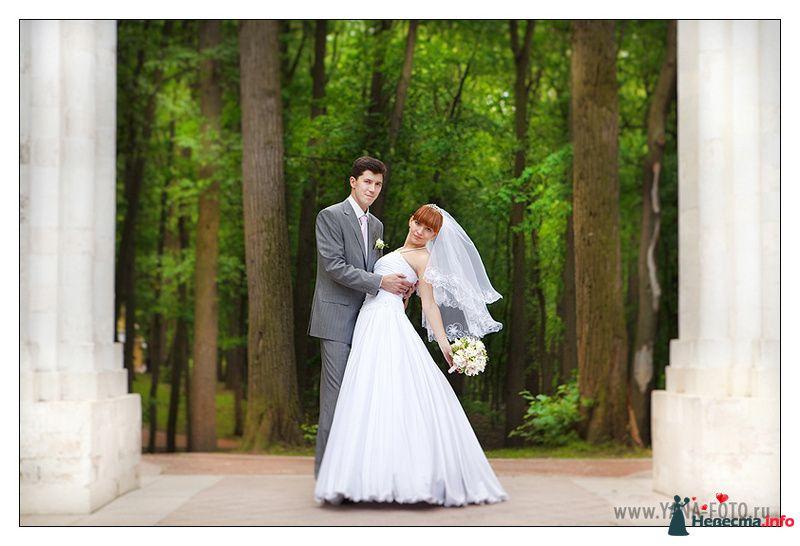 Фото 108031 в коллекции Свадьба Ольги и Рината - Фотограф Яна Роджерс