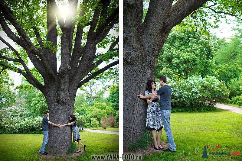 лав-стори на 10 годовщину свадьбы - фото 111013 Фотограф Яна Роджерс