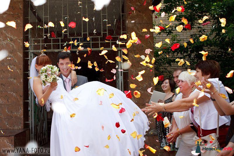 Фото 131276 в коллекции Свадьба Ольги и Рината - Фотограф Яна Роджерс