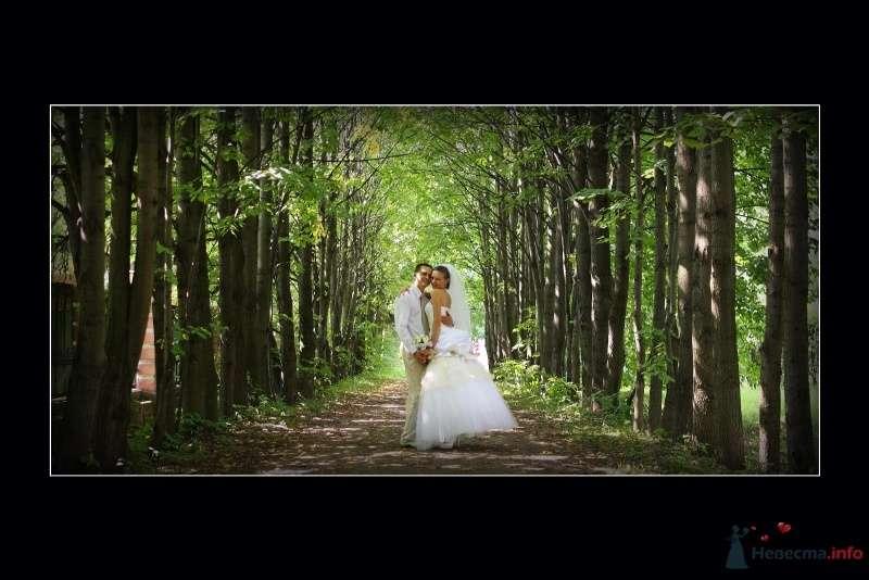 Фото 60215 в коллекции моя свадьба - vesna086