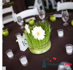"""Оригинальные композиции на столы гостей, пакет """"Кантри"""" - фото 117462 Art Floris - комплексное оформление"""