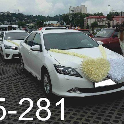 Аренда авто Тойота Камри и Королла, цена за 1 час