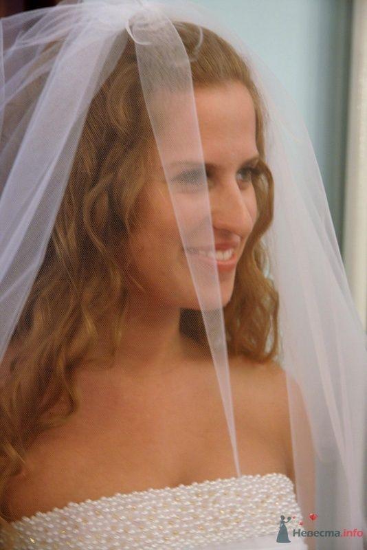 Фото 28422 в коллекции Свадебные фото - Фотограф Ольга Моторная