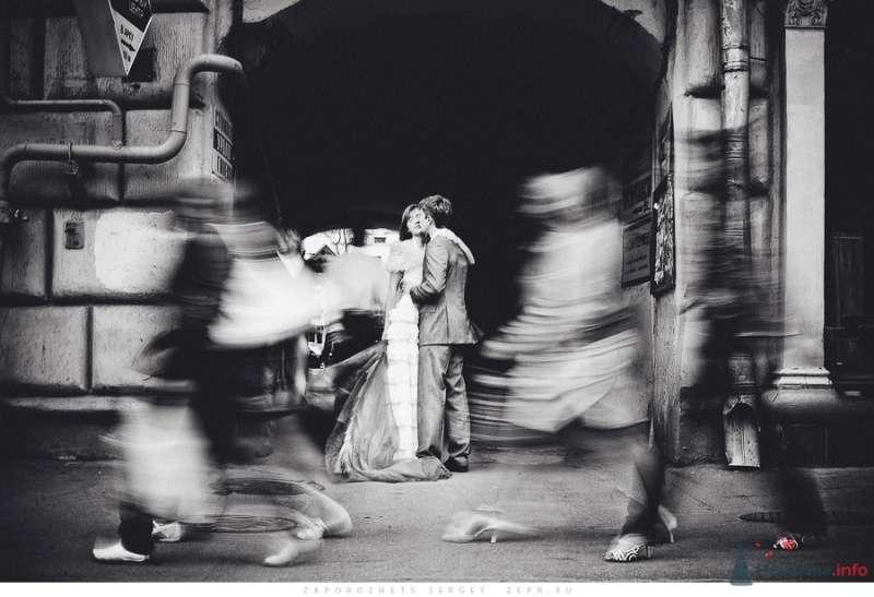 Фото 30882 в коллекции Новая свадебная фотография / Запорожец Сергей - Фотограф Запорожец Сергей