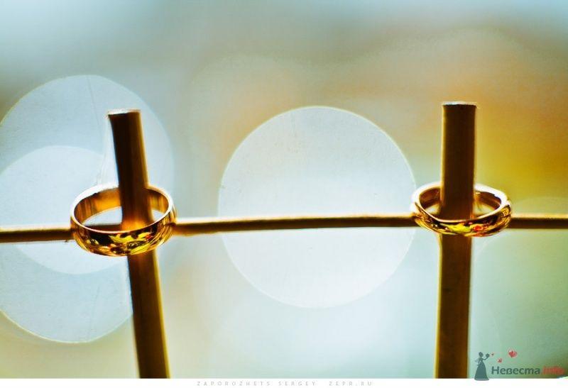 Золотые обручальные кольца с рубинами и бриллиантами на колышках. - фото 30883 Фотограф Запорожец Сергей