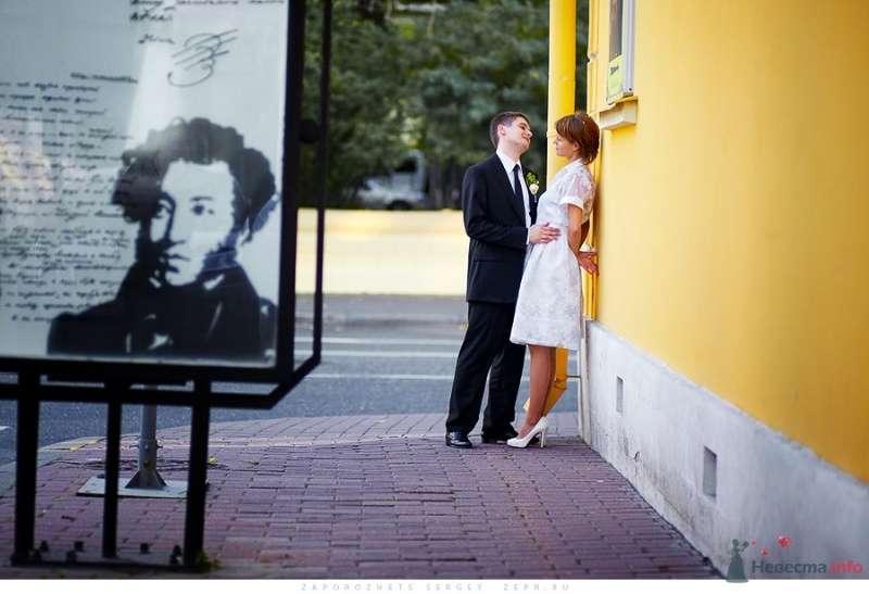 Свадебный фотограф Запорожец Сергей - фото 37104 Фотограф Запорожец Сергей