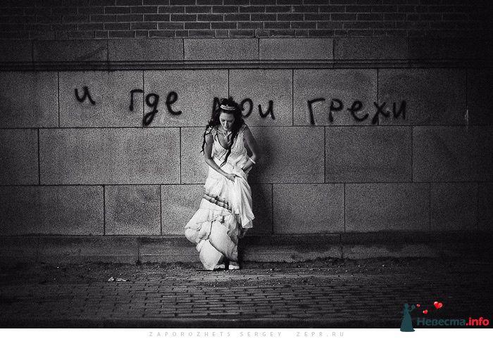 *** - фото 81314 Фотограф Запорожец Сергей