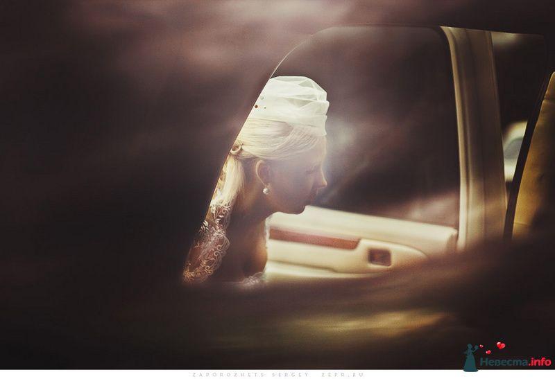 Свадебный фотограф / Сергей Запорожец - фото 82291 Фотограф Запорожец Сергей