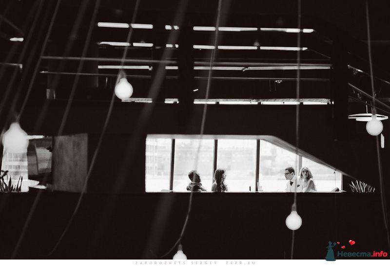 Свадебный фотограф / Сергей Запорожец - фото 83388 Фотограф Запорожец Сергей
