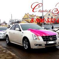 машины на свадьбу в Туле