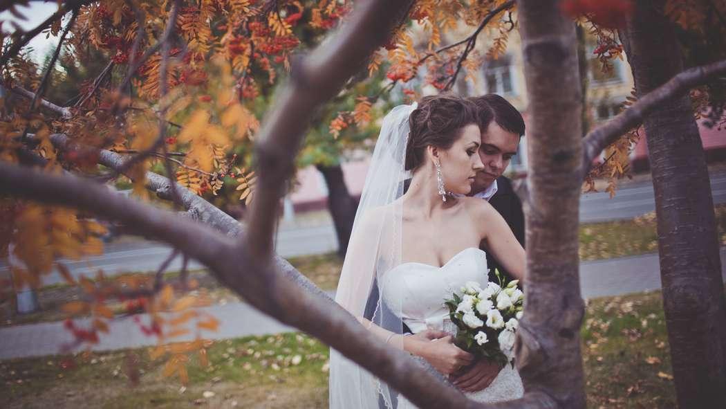 Фото 8583936 в коллекции Портфолио - Свадебный фотограф Дмитрий Кох