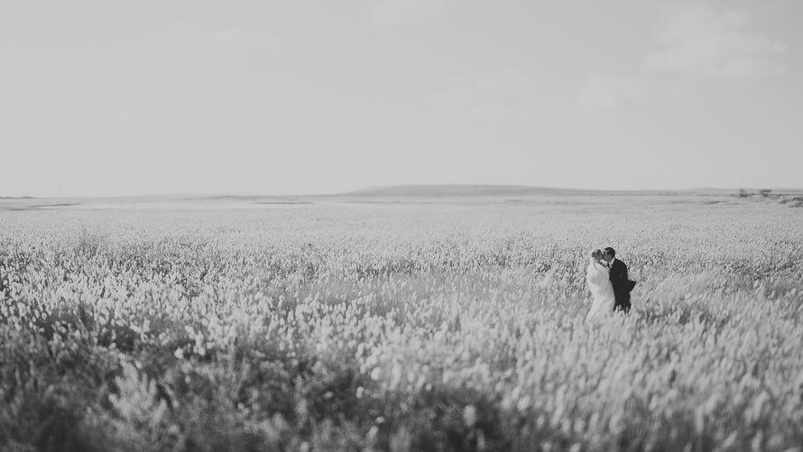 Фото 8583968 в коллекции Портфолио - Свадебный фотограф Дмитрий Кох