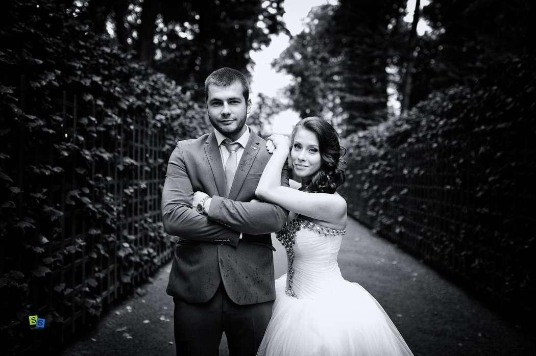 Фото 8651720 в коллекции Базикало Сергей. Нестатичная свадьба - Фотограф Базикало Сергей