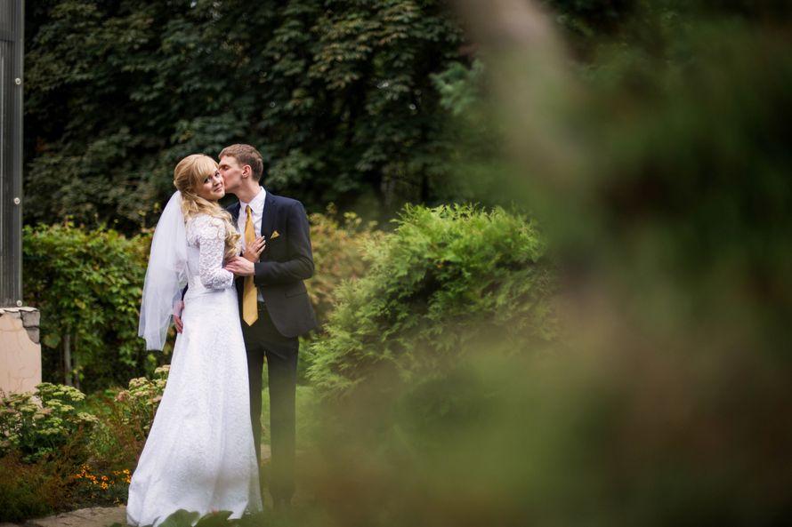 Фото 8837660 в коллекции Wedding - Фотограф Mika Fine