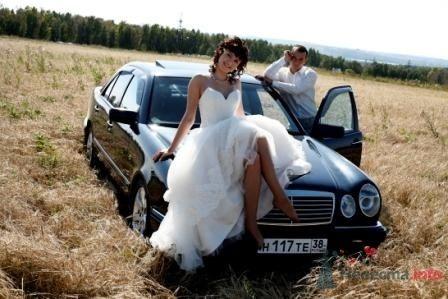 Фото 67557 в коллекции Мои фотографии - Иркутская невеста