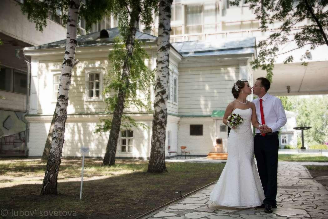 Фото 8973350 в коллекции Портфолио - Фотограф Любовь Советова