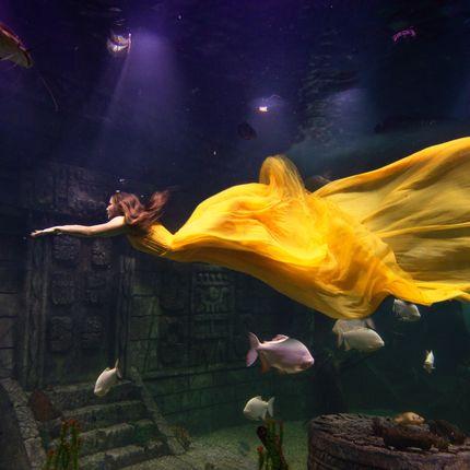 Подводная фотосъёмка Love story, 1 час
