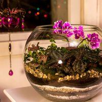 Шар 25 см «Тропический лес» с мини-орхидеями (ваза 7,5 л, ⌀25 см)   #16