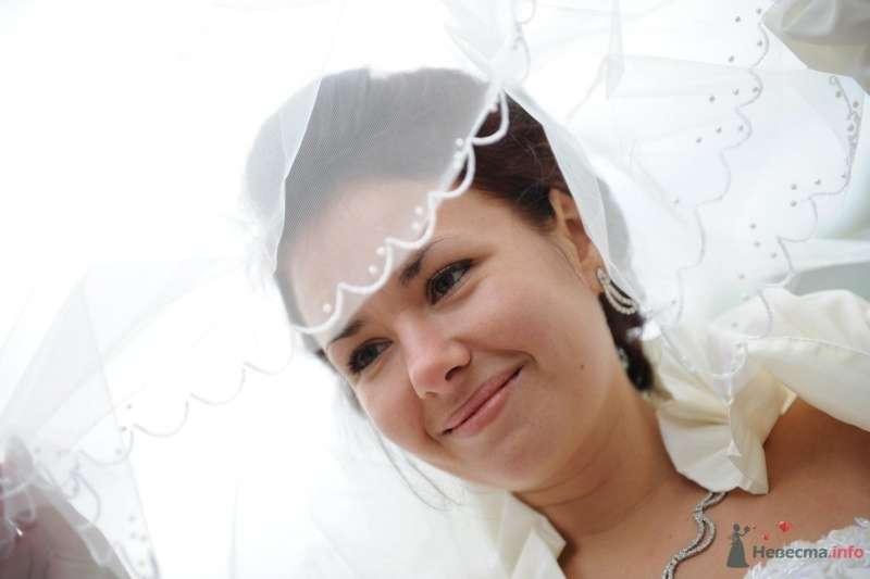 Фото 61452 в коллекции Мои фотографии - Туркина Мария