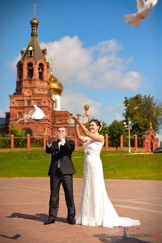Фото 57906 в коллекции Свадебные фотографии - Фотограф Мария Ширяева (KAIOSHK)