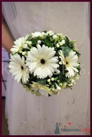 Фото 68172 в коллекции Мои фотографии - Невестушка