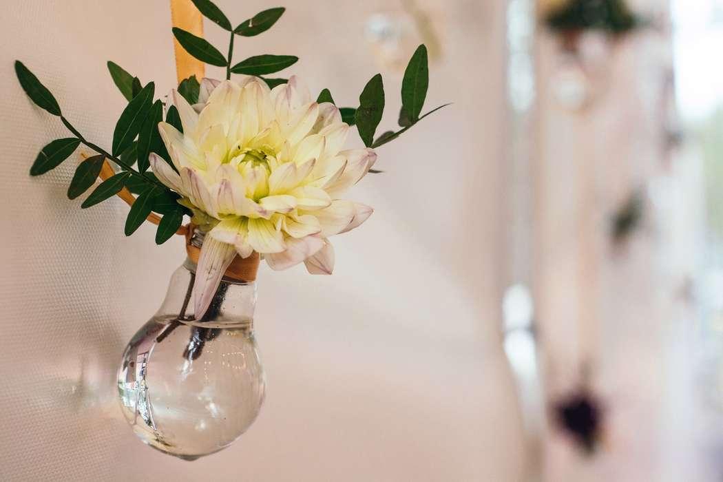 Фото 16376892 в коллекции Boho wedding Юлии и Артёма - Свадебное агентство Морошка