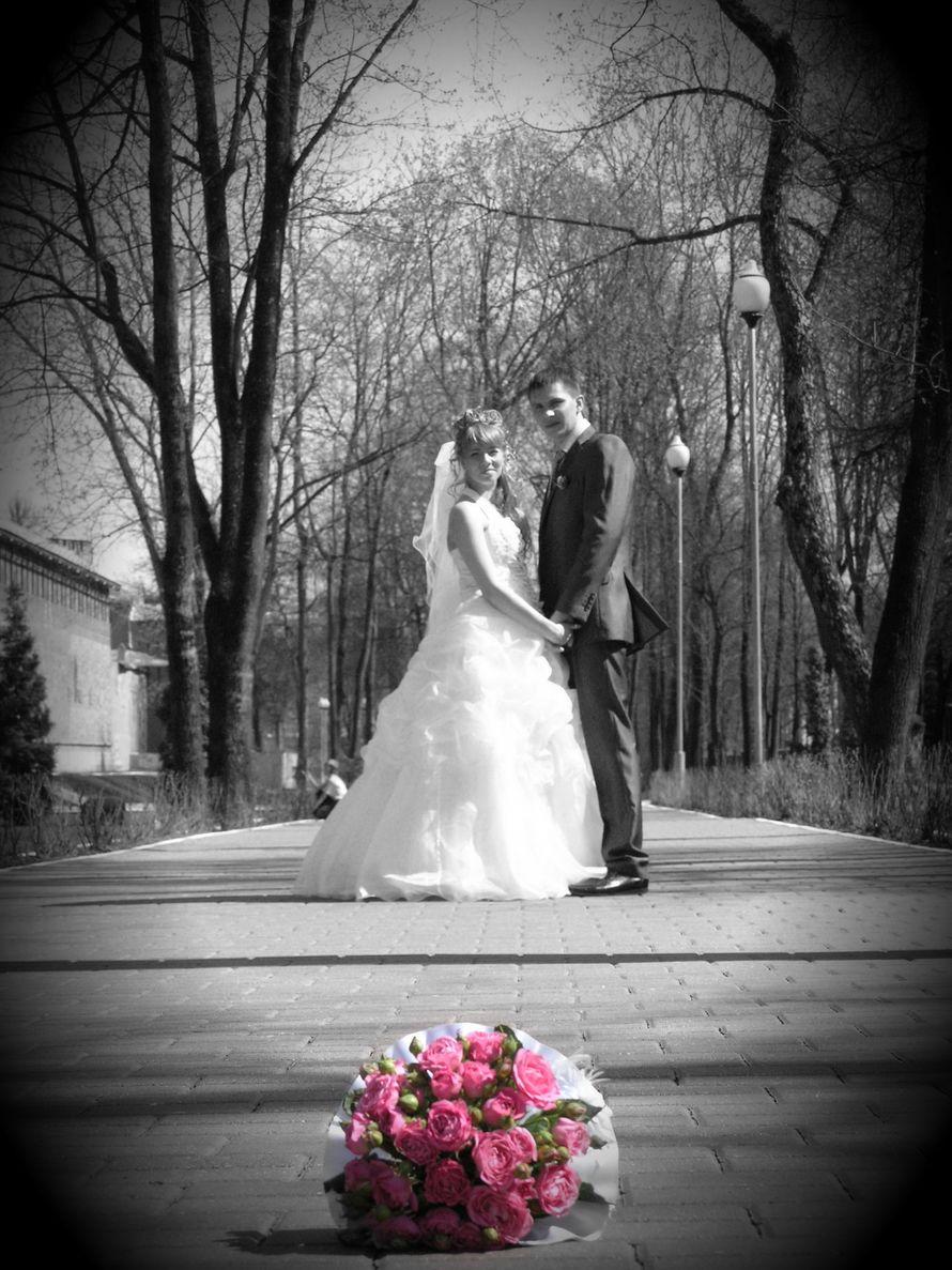 Фото 10075640 в коллекции Портфолио - Видео и фотосъемка Виктор Сафонов