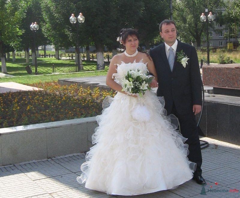Фото 36130 в коллекции Свадьба 15.08.2009