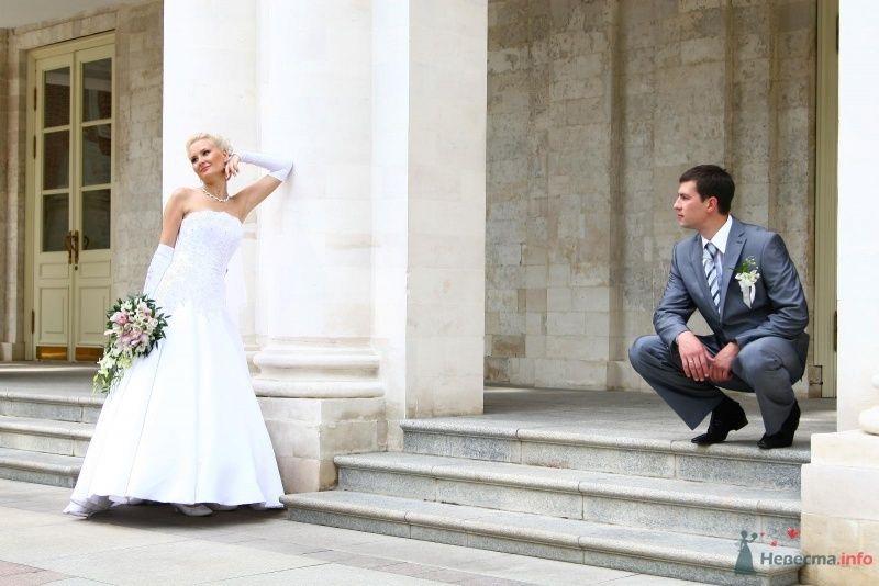 Жених и невеста стоят на ступеньках белого здания