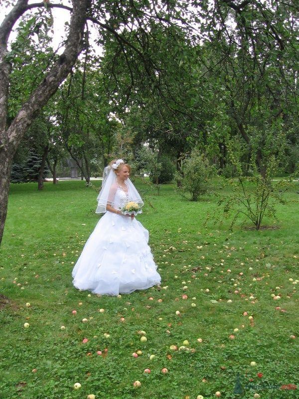 Невеста на яблоках