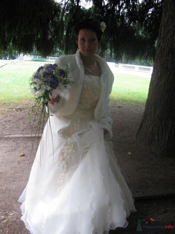 Фото 40481 в коллекции Свадьба - Ксюньчик