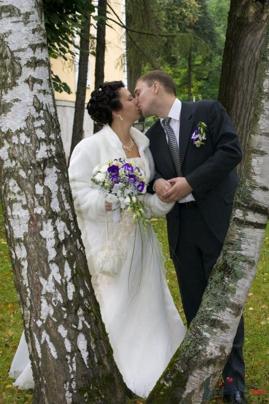 Фото 40483 в коллекции Свадьба