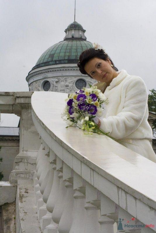 Фото 40484 в коллекции Свадьба - Ксюньчик