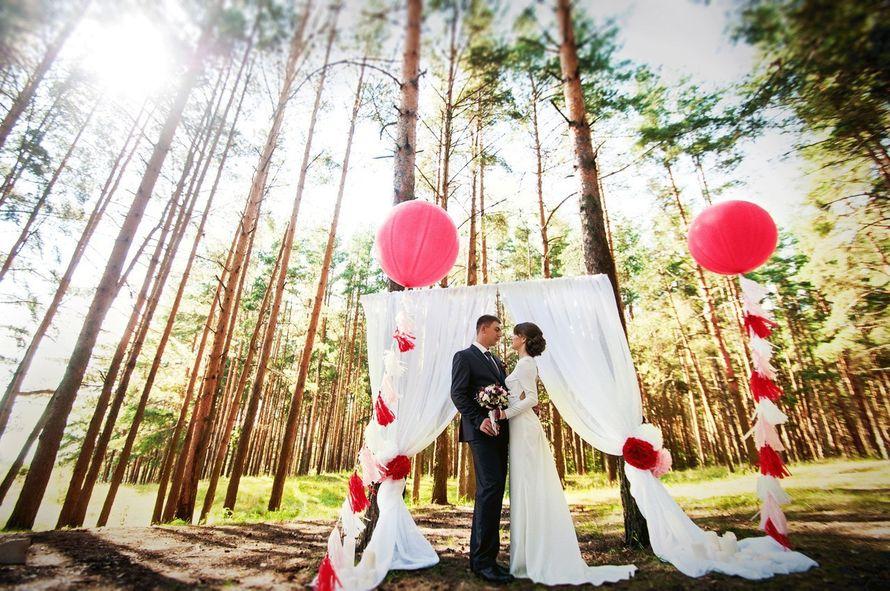 """Фото 10201170 в коллекции Портфолио - Свадебное агенство """"Счастливые люди"""""""