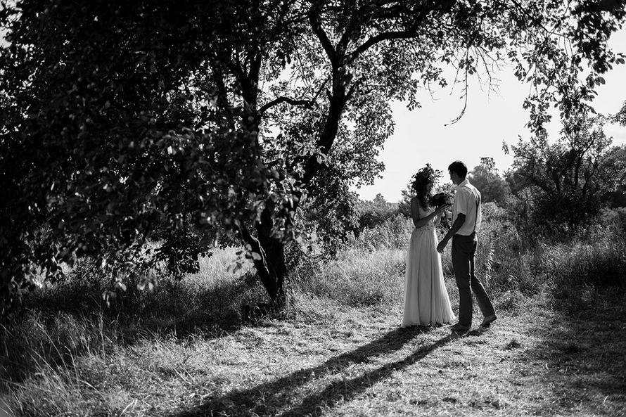 Фото 10296808 в коллекции Портфолио - Свадебный фотограф Наталья Шевчук