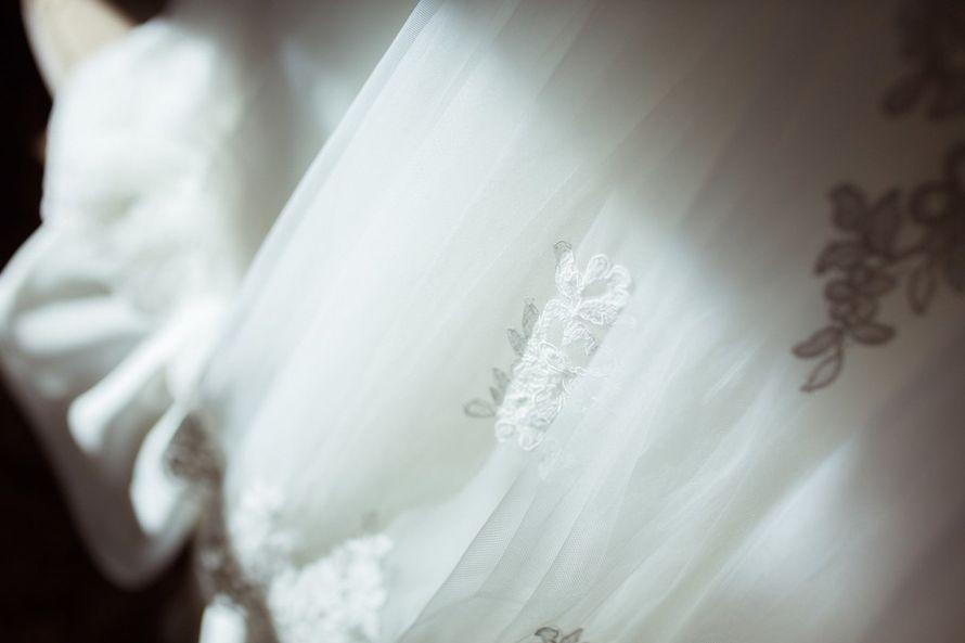 """Фото 10294308 в коллекции Татьяна и Александр. 25.07.15 - Свадебное агентство """"Амелия"""""""