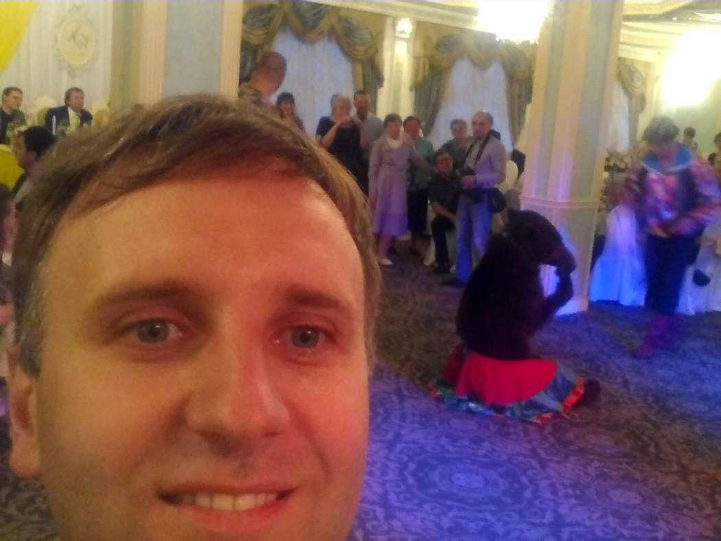 Фото 10363770 в коллекции Миша по имени Маша на свадьбе семьи Мороз - Ведущий Сергей Коньков