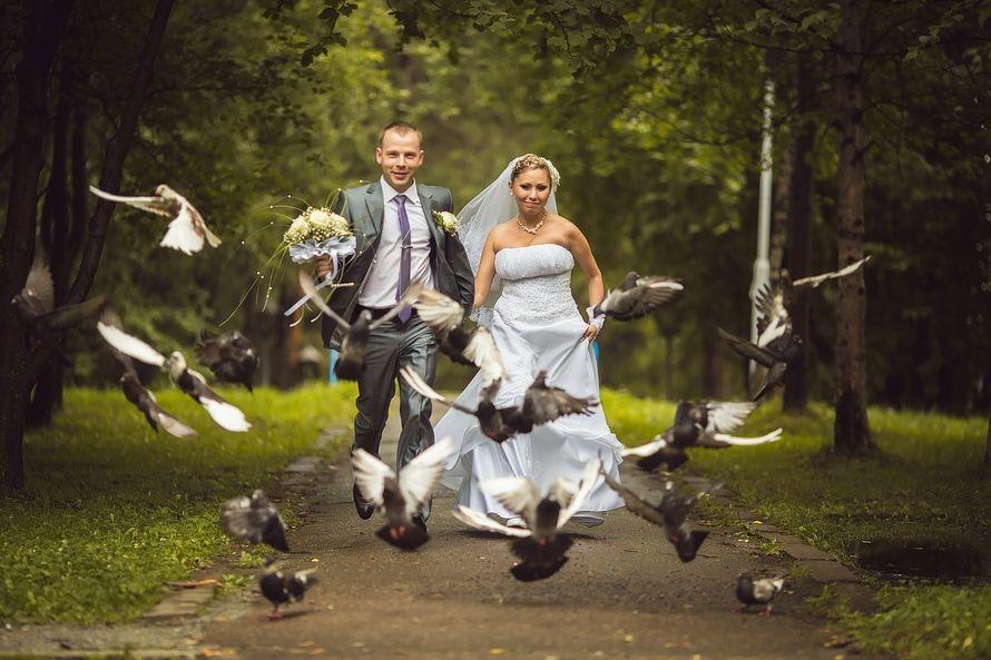 Фото 10420702 в коллекции Свадебные фотосессии - Фотограф Царенок Владимир