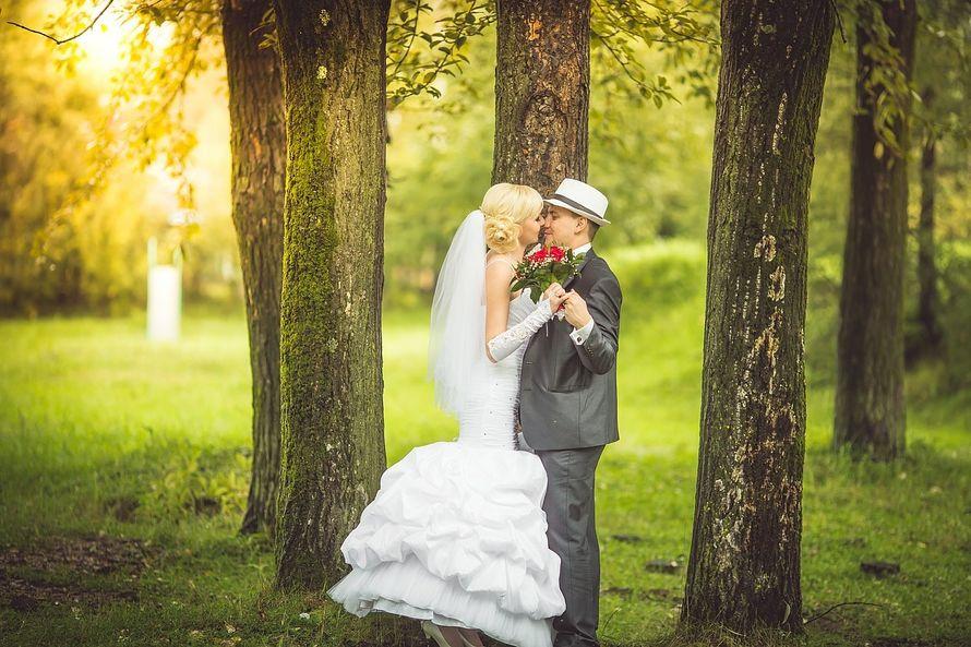 Фото 10420706 в коллекции Свадебные фотосессии - Фотограф Царенок Владимир