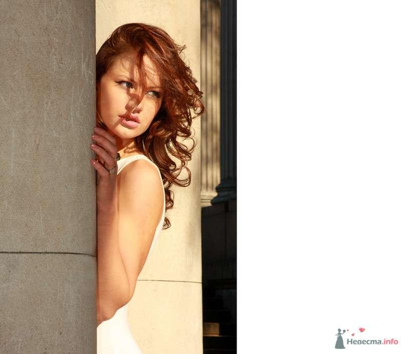 Фото 80365 в коллекции Мои фотографии - Фотограф Александр Раевский - Rav-Studio