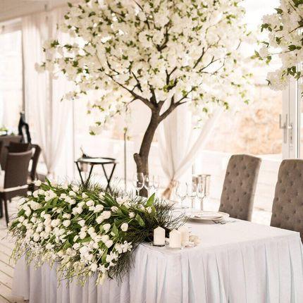 Белая яблоня luxe