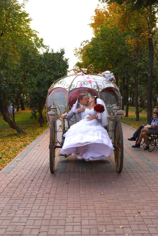 Фото 11046762 в коллекции Фото,Видео.. - Фото, Видеосъёмка Сергей Романов