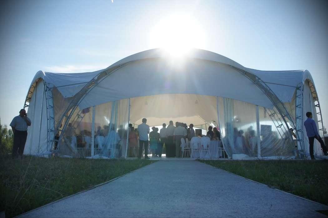 """Фото 12853790 в коллекции Мы - Шатер для свадеб """"Avalon"""""""