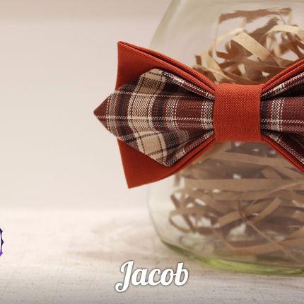 Бабочка Jacob