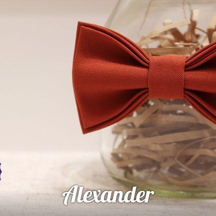 Бабочка Alexander
