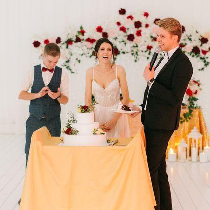 Проведение свадьбы и Dj, 5 часов с оборудованием